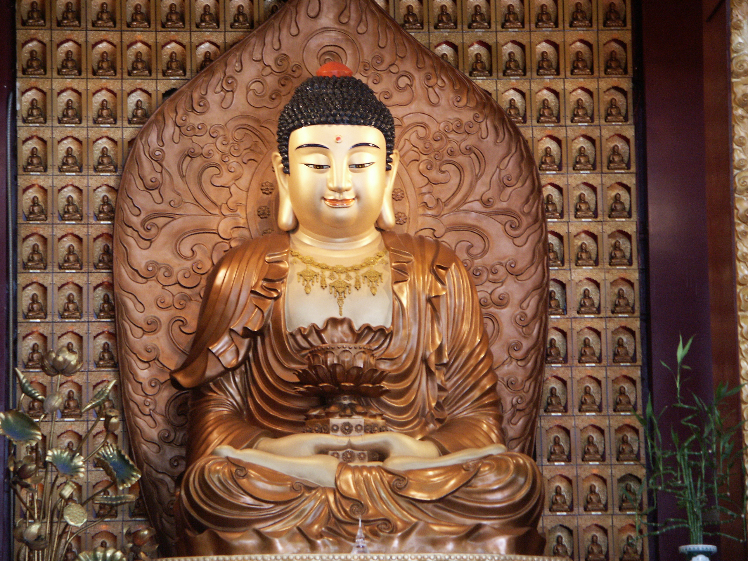 world religions report on buddhism It is a fact that we live in a religiously diverse world religious diversity can and  often does result in grave misunderstanding, hostility, and, as we know all too.